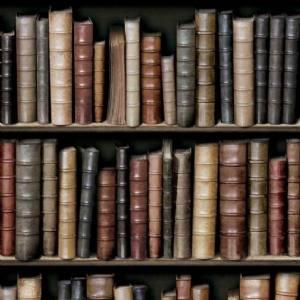 Totalitàit Luomo Ricco E I Libri